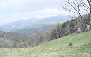 Przełęcz pod Skalitem. Widok na szczyty Beskidu Małego.