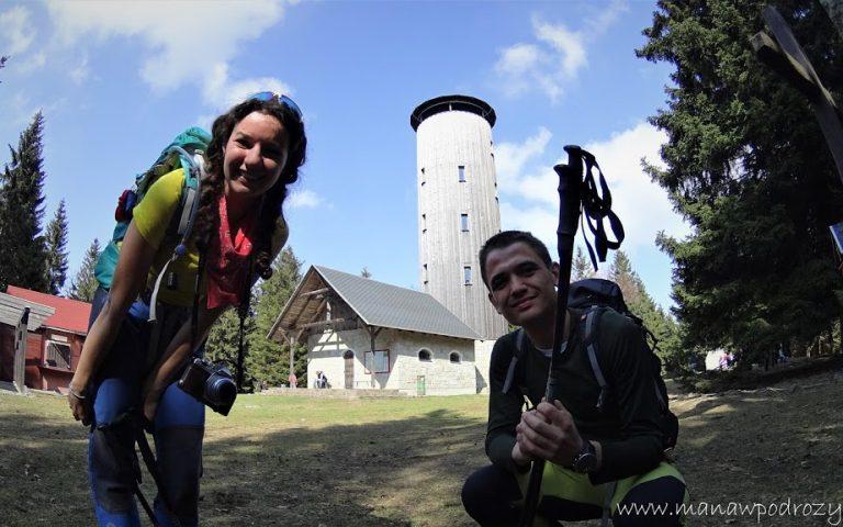 Wieżą widokowa na Borówkowej Górze