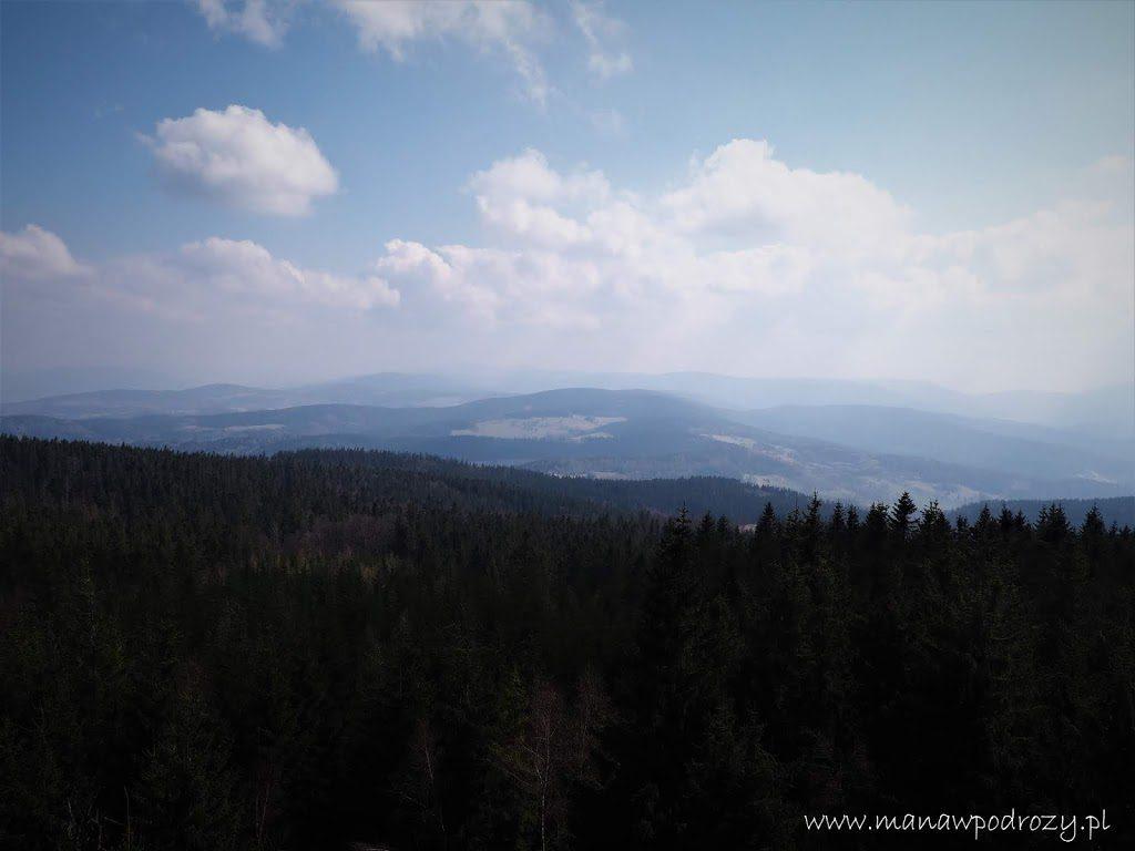 I spojrzenie na Masyw Śnieżnika z wieży widokowej na Borówkowej Górze