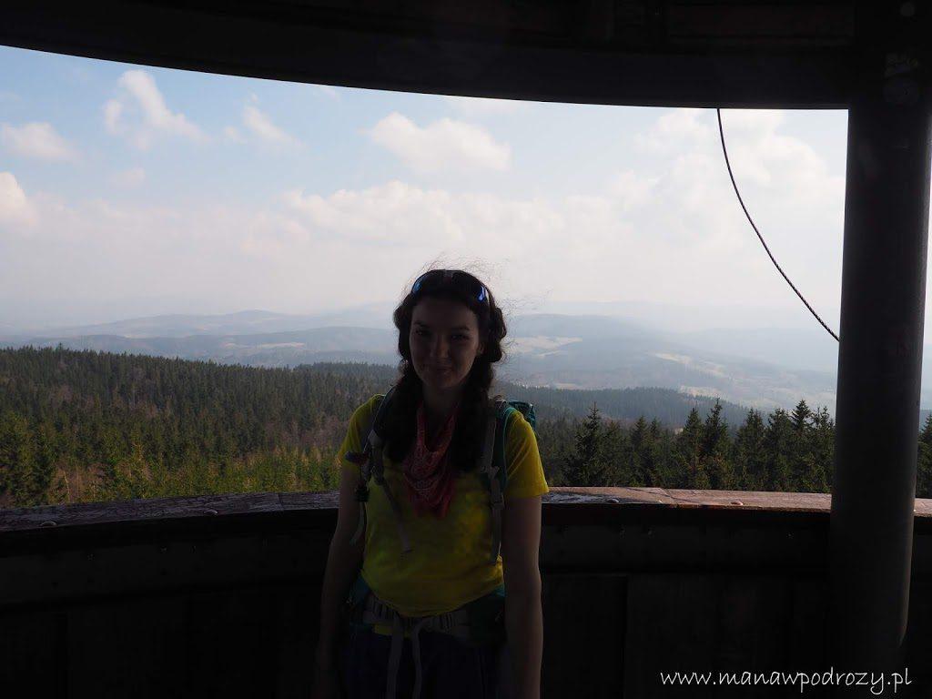 Widok z wieży widokowej na Borówkowej Górze