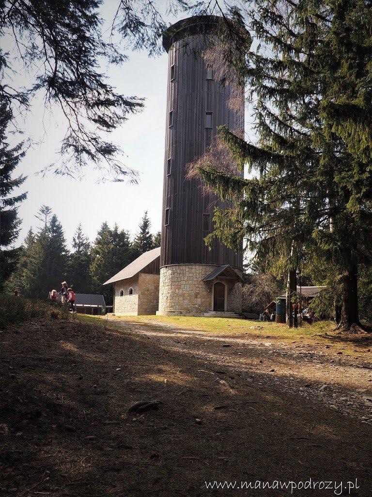 Wieżą widokowa- Borówkowa Góra