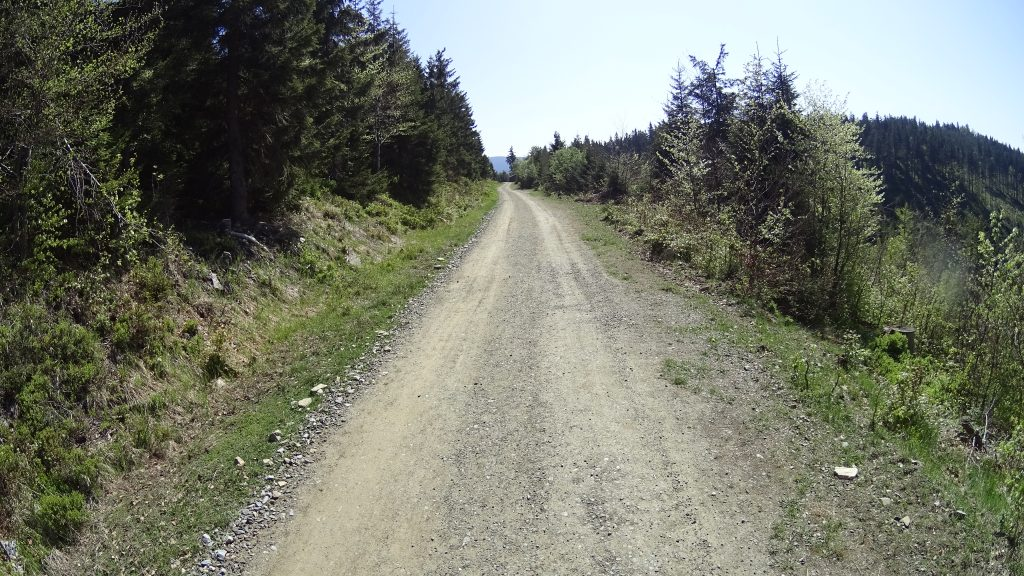 Droga prowadząca do Paprsku