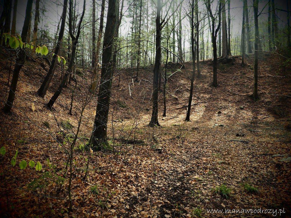 Hałdy górnicze po starej kopalni złota w Głuchołazach