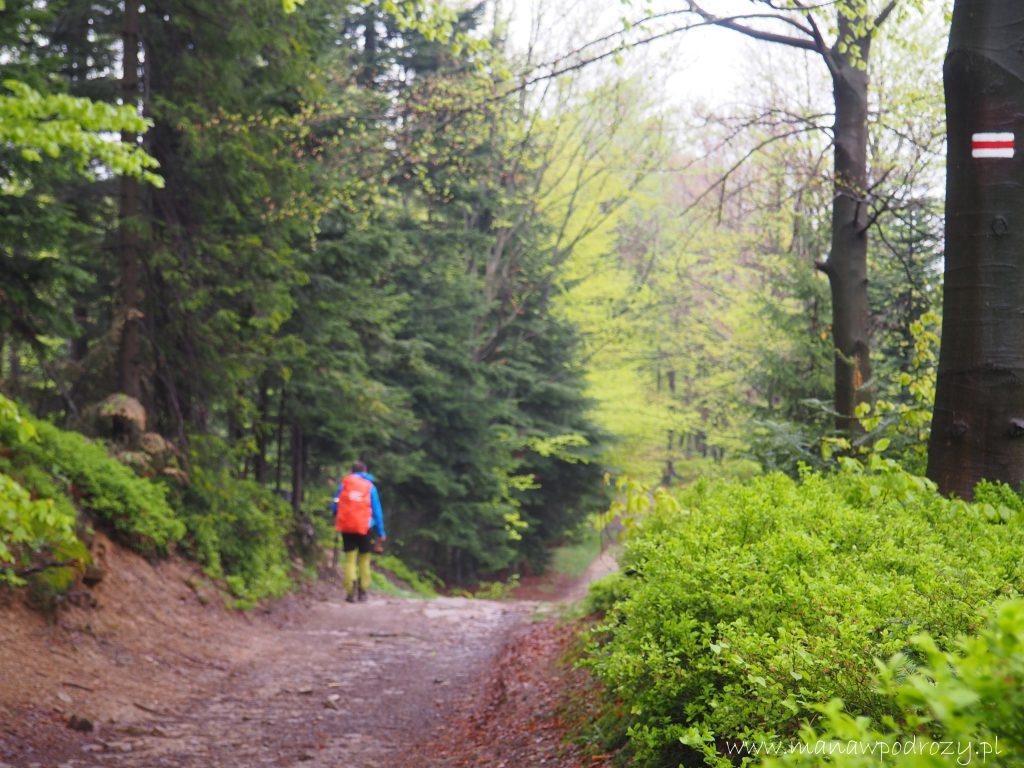 Mały Szlak Beskidzki, Potrójna