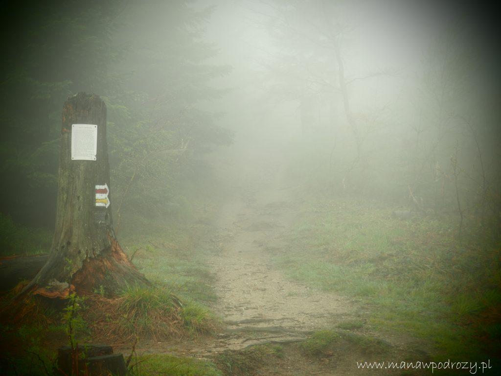 Mały Szlak Beskidzki, Rozdroże Anuli