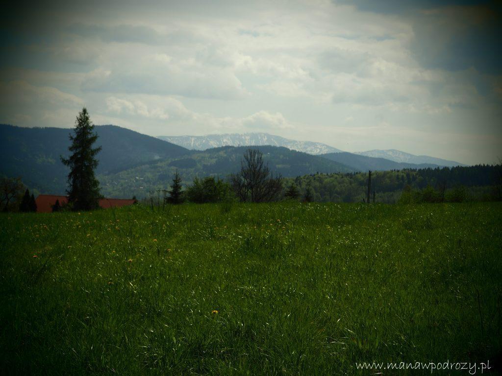 Mały Szlak Beskidzki, Babia Góra