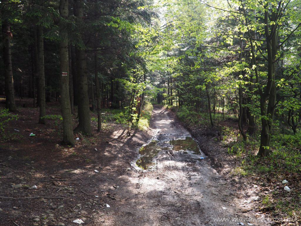 Mały Szlak Beskidzki