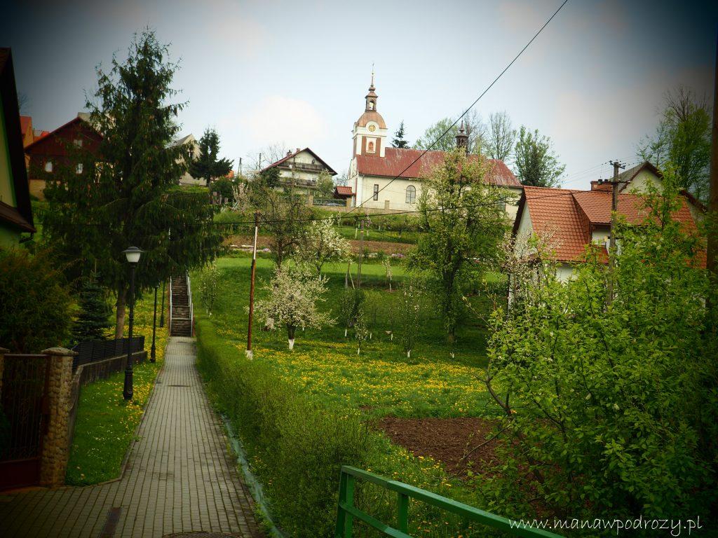Mały Szlak Beskidzki, Palcza