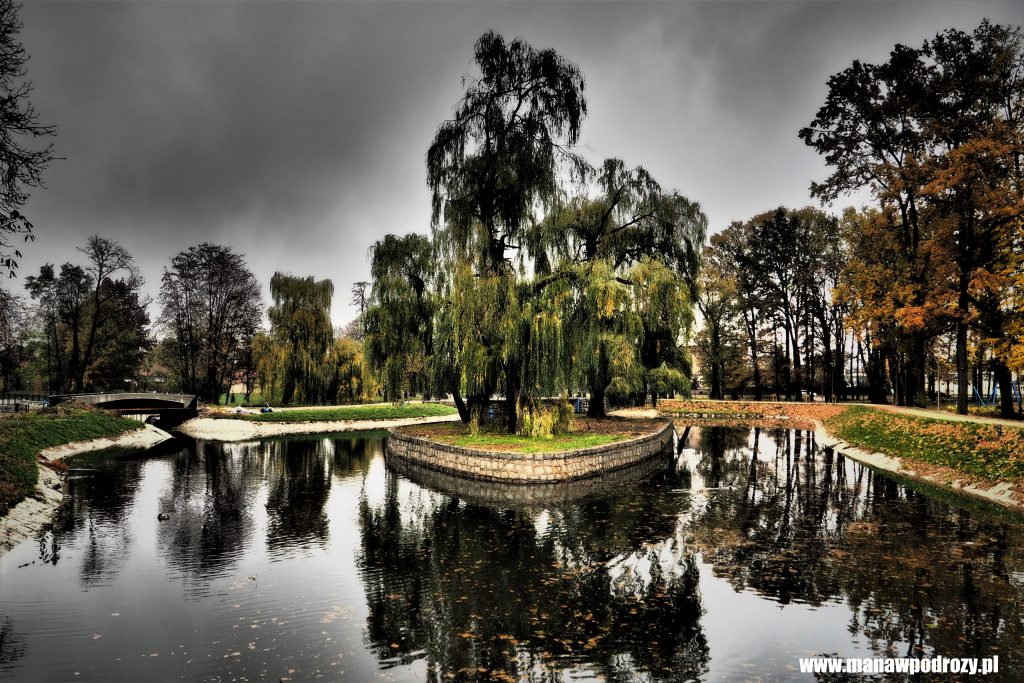 Jeden z parków w Świdnicy