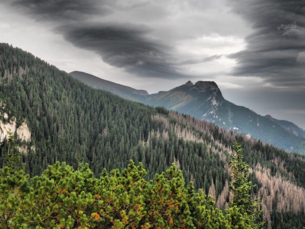 Widok na Giewont z Przełęczy między Kopami
