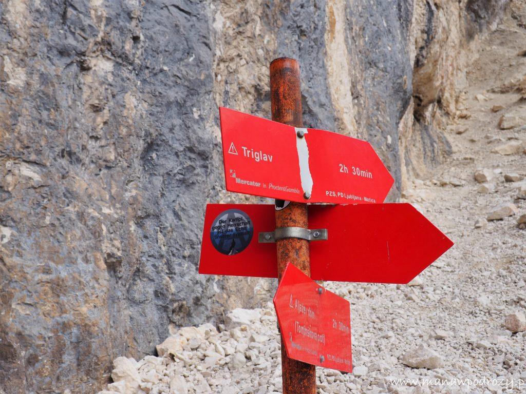 Pod ścianą Bohinjskego Vrchu