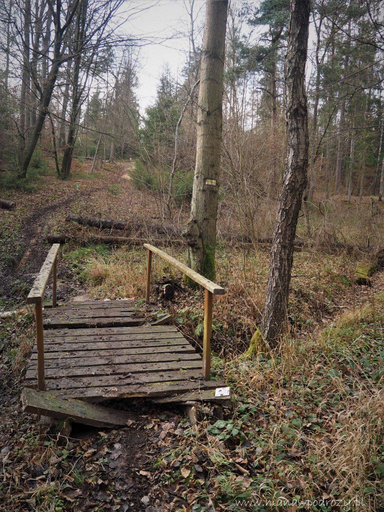 Mostek Andrzeja na żółtym szlaku