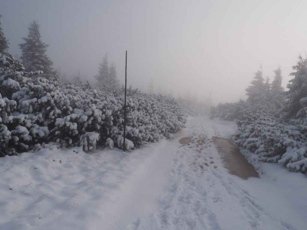 Droga przy schronisku na Seraku