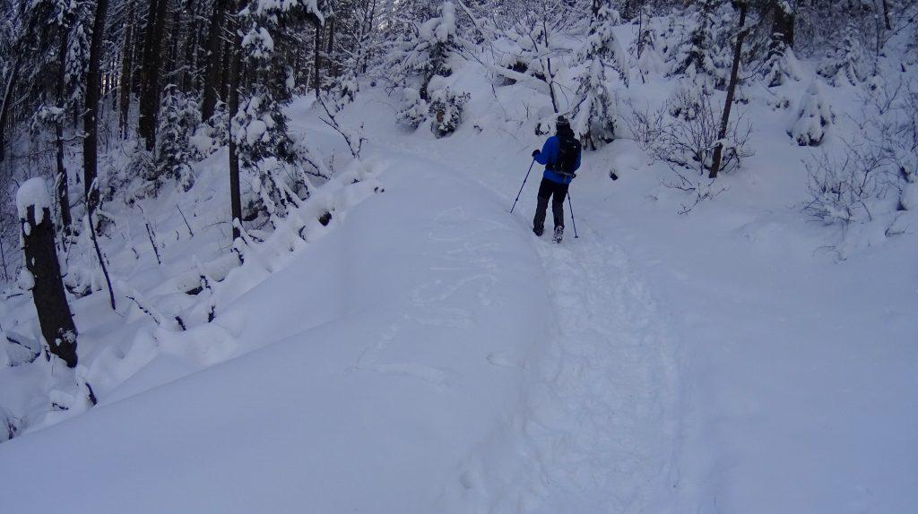 Szlak ze schroniska na Przełęcz Krowiarki