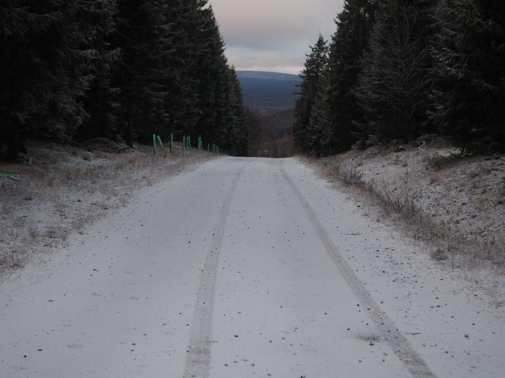 Droga ze Schroniska Jagodna na wieżę widokową