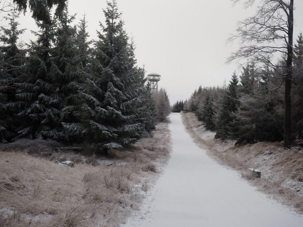 Droga do wieży na Jagodnej