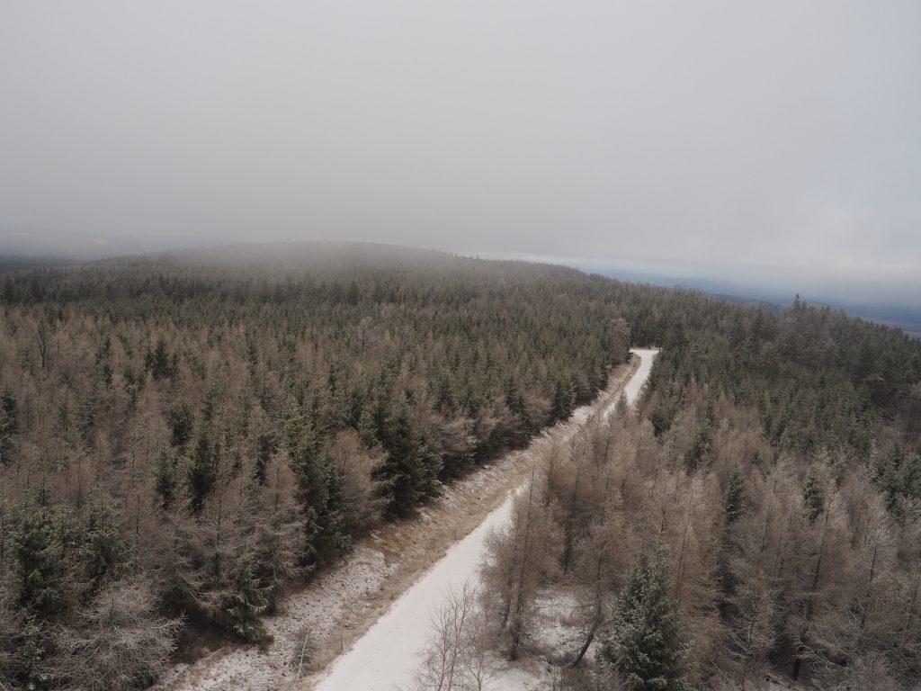Widok z wieży widokowej na Jagodnej