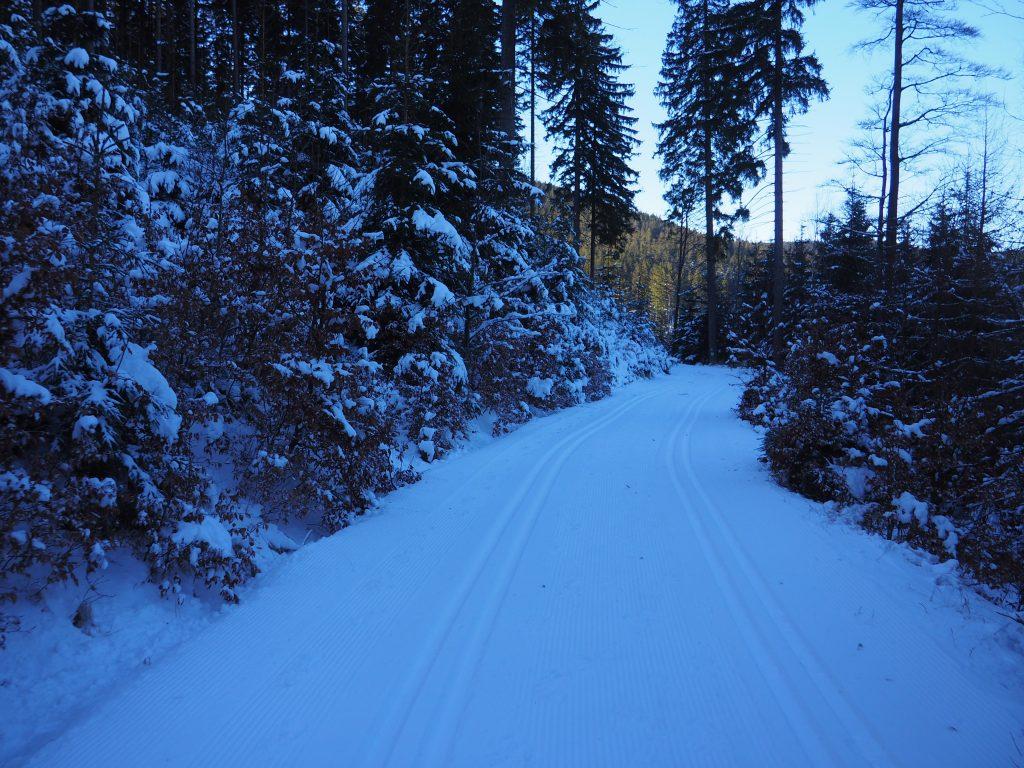 Trasy narciarskie