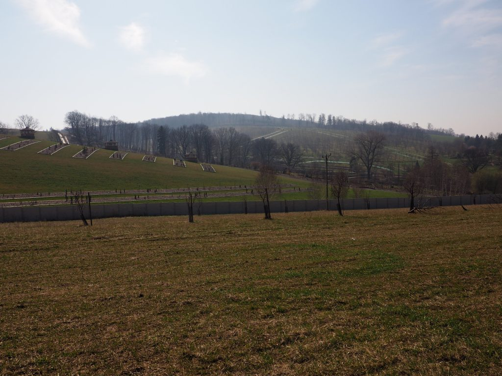 Widok na Arboretum Wojsławice
