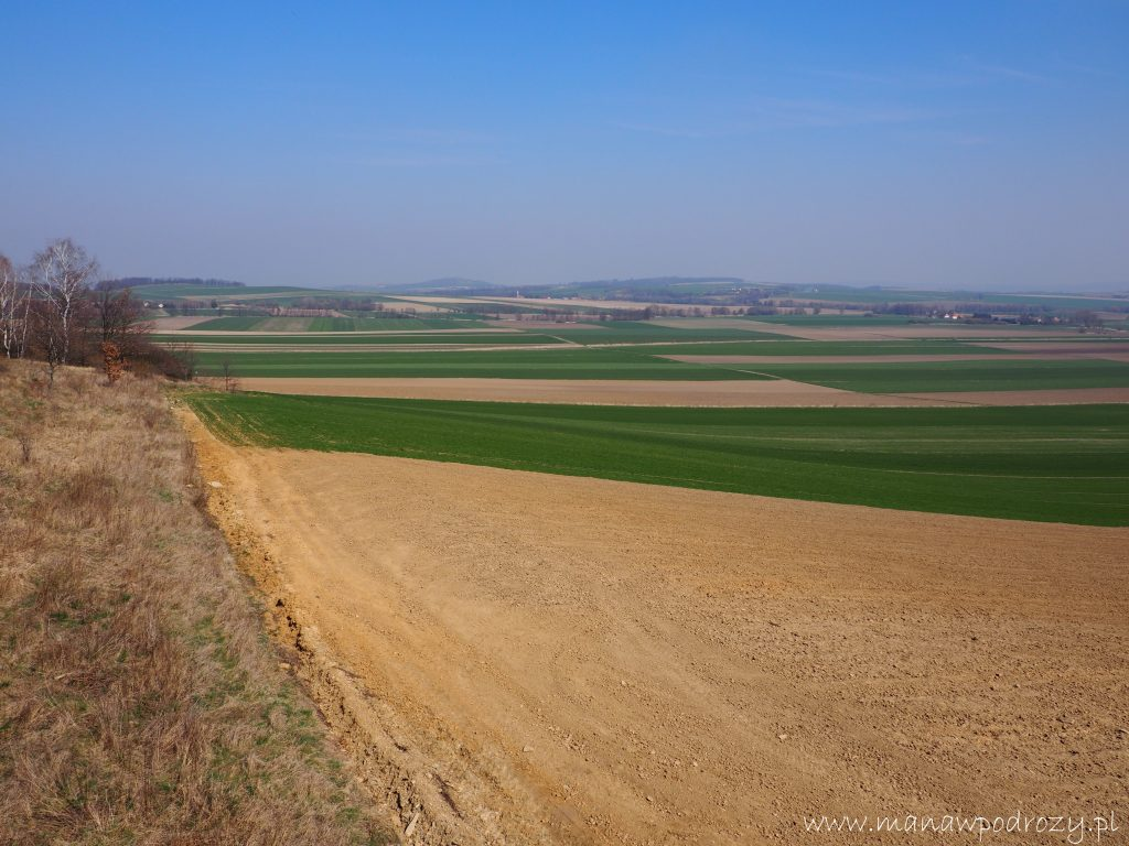 Szlak pomiędzy polami