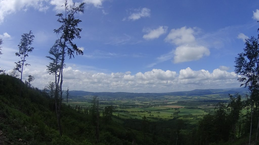 Widok na Góry Orlickie i Bystrzyckie z Pętli Jodłów