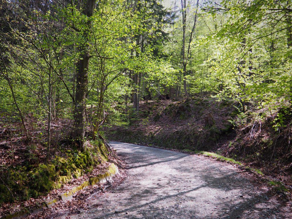 Czarny szlak w kierunku Wolarza