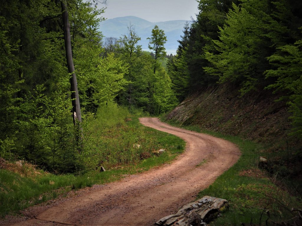 Czarny szlak z widokiem na Czarną Górę