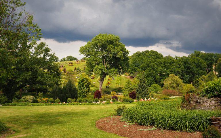 Arboretrum w Wojsławicach