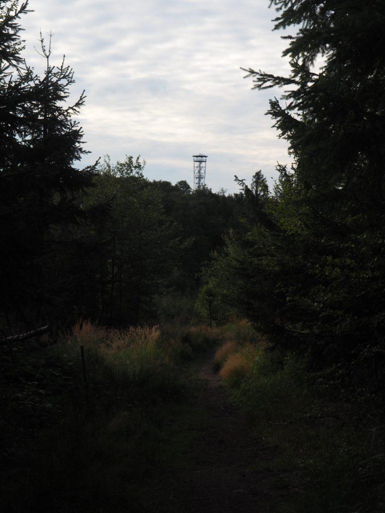 Kłodzka Góra widziana ze stoków Jeleniej Kopy
