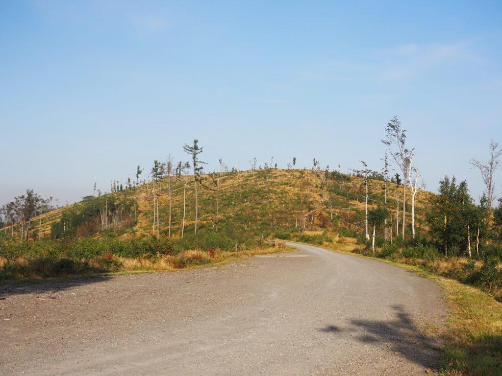 Na Przełęczy Mokrej- widok na Srebrną Kopę