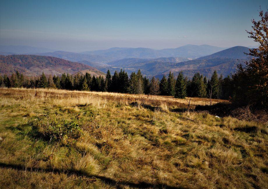 Panoarama z Bendoszki Wielkiej w kierunku północnym