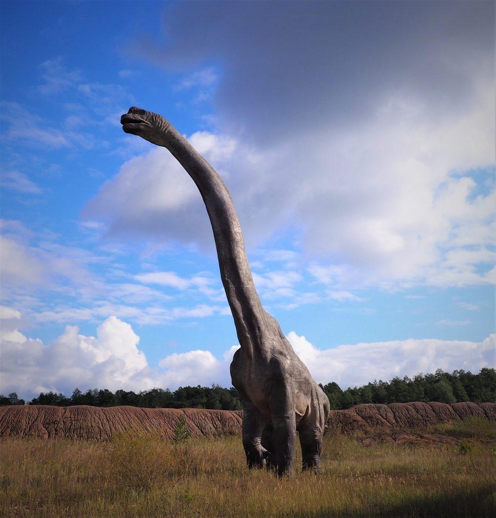 Patatagotitan mayorum- najwyższy dinozaur na świecie