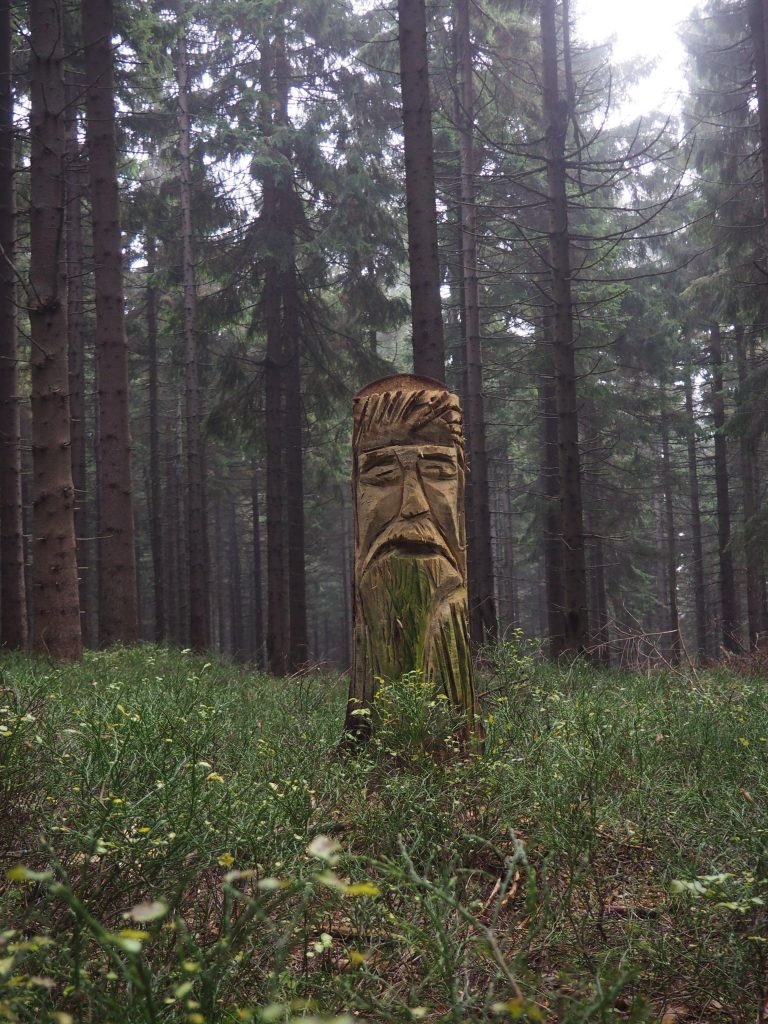 A po drodze rozglądajcie się uważnie, bo pomiędzy drzewami możecie trafić na takie niespodzianki:)