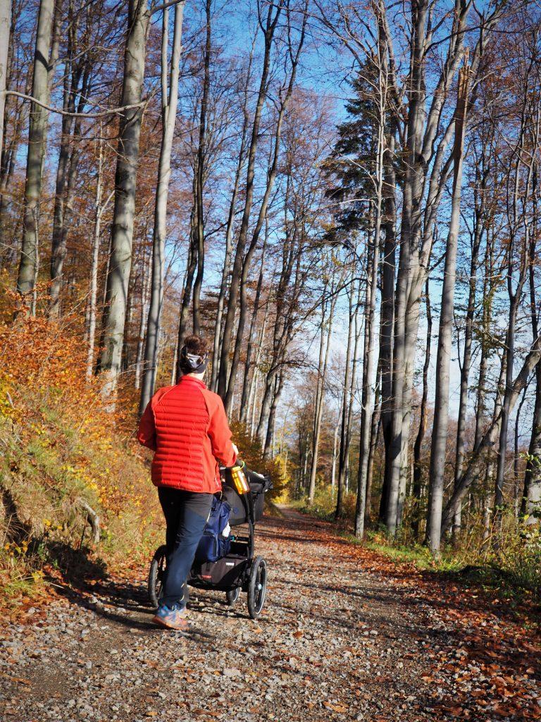 Nadal czasami korzystamy z wózka w górach;) Tutaj na szlaku prowadzącym na Biskupią Kopę