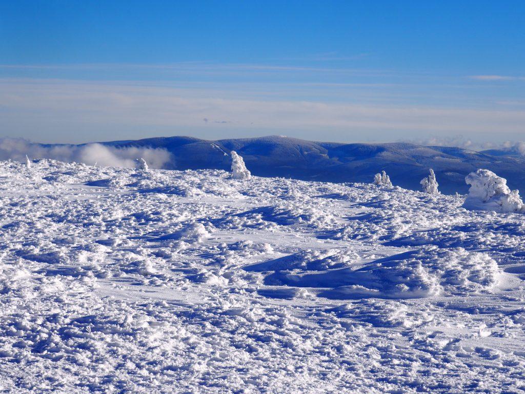 Widoki ze szczytu Śnieżnika w kierunku Jeseników