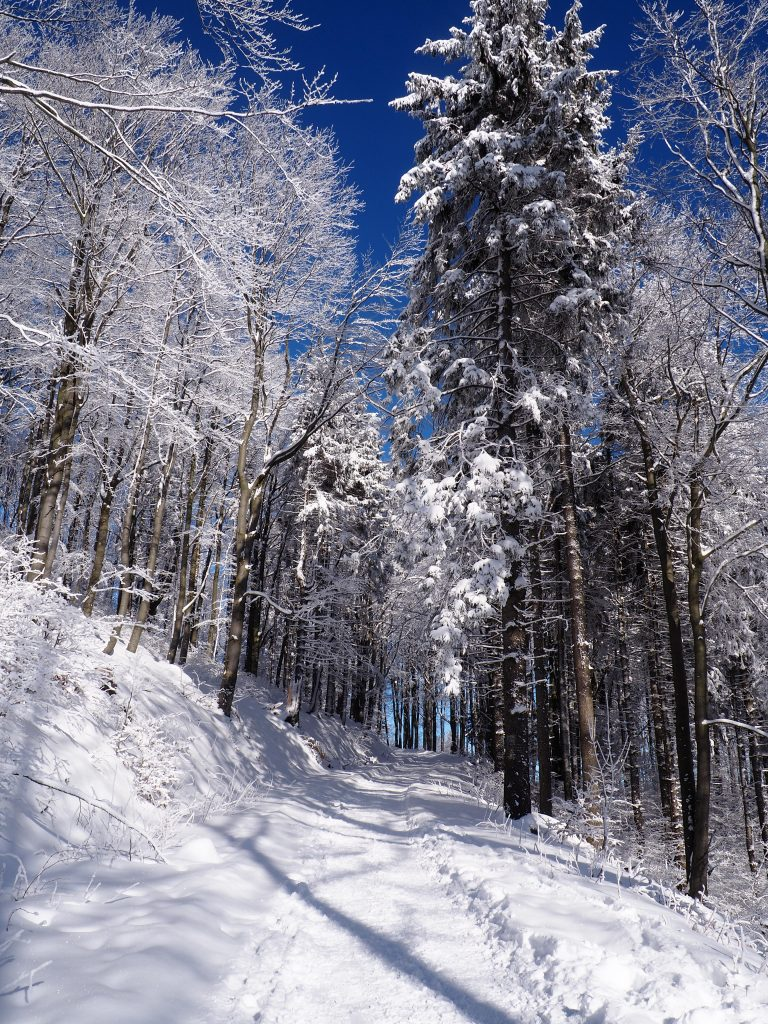 I jeszcze ta piękna odsłona zimy