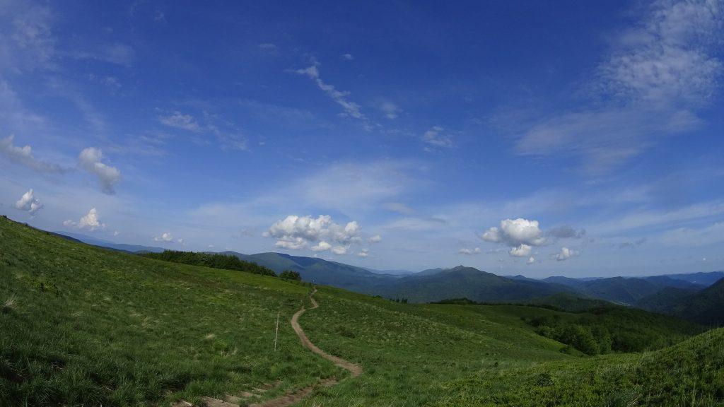 Widok z podejścia na Tarnicę