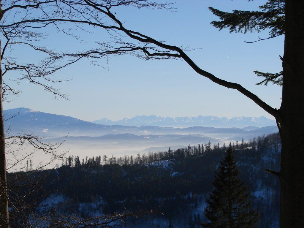 Widoki na Tatry z Szyndzielni