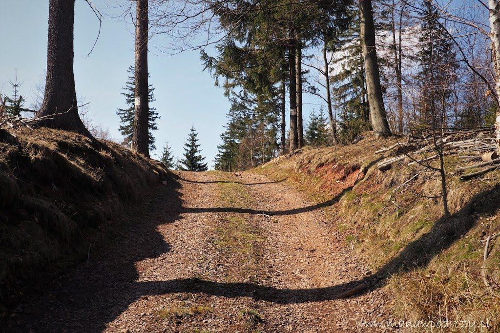 Zółty szlak na Borową Górę