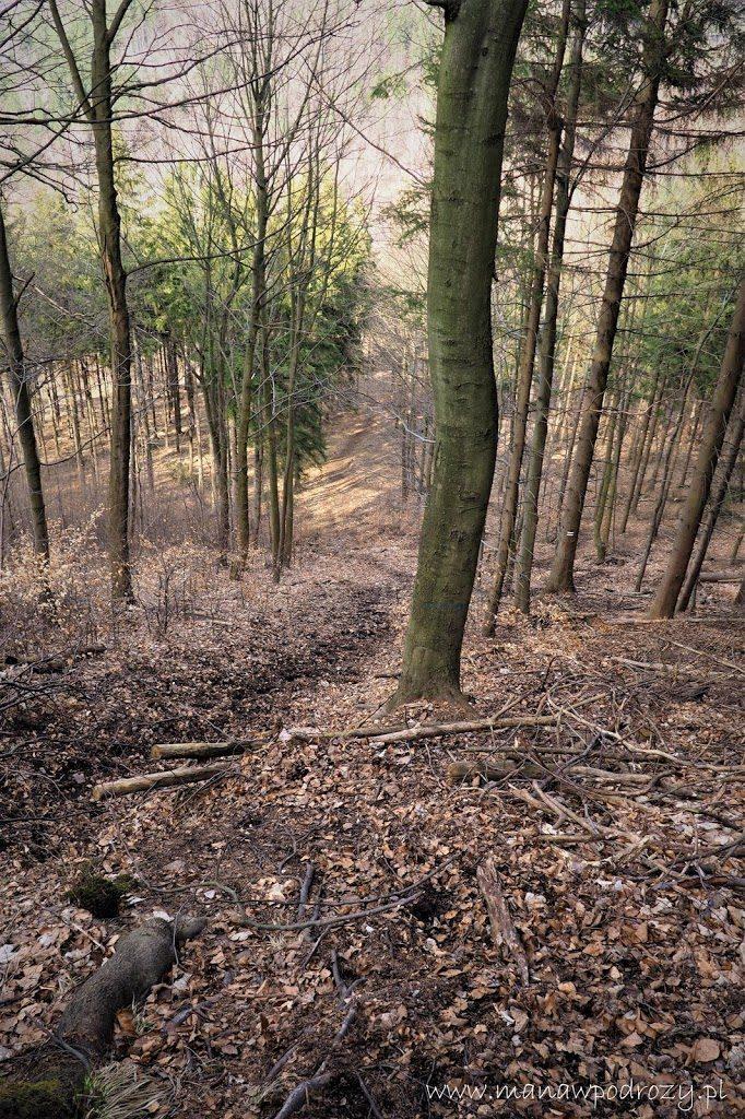 Strome zejście czarnym szlakiem z Borowej Góry