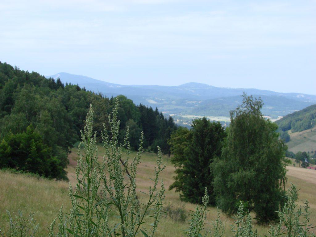 Widoki z Przełęczy Lądeckiej