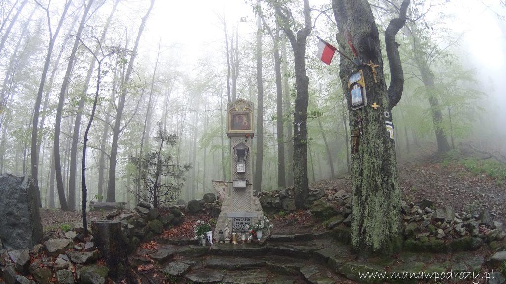 Mały Szlak Beskidzki, Przełęcz u Panienki