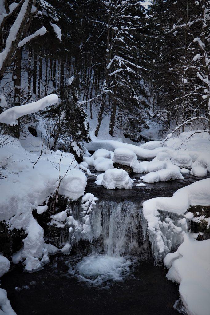 Dolina Białej Opawy