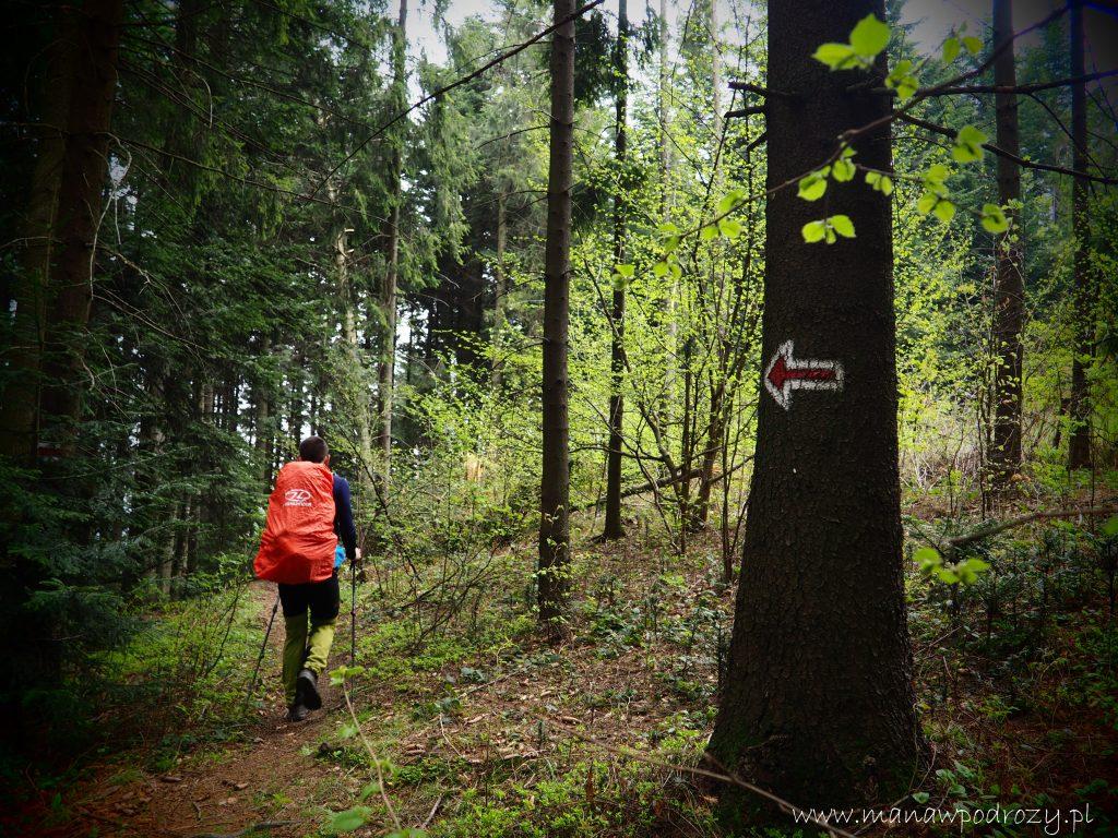 Mały Szlak Beskidzki, Wierzbanowska Góra