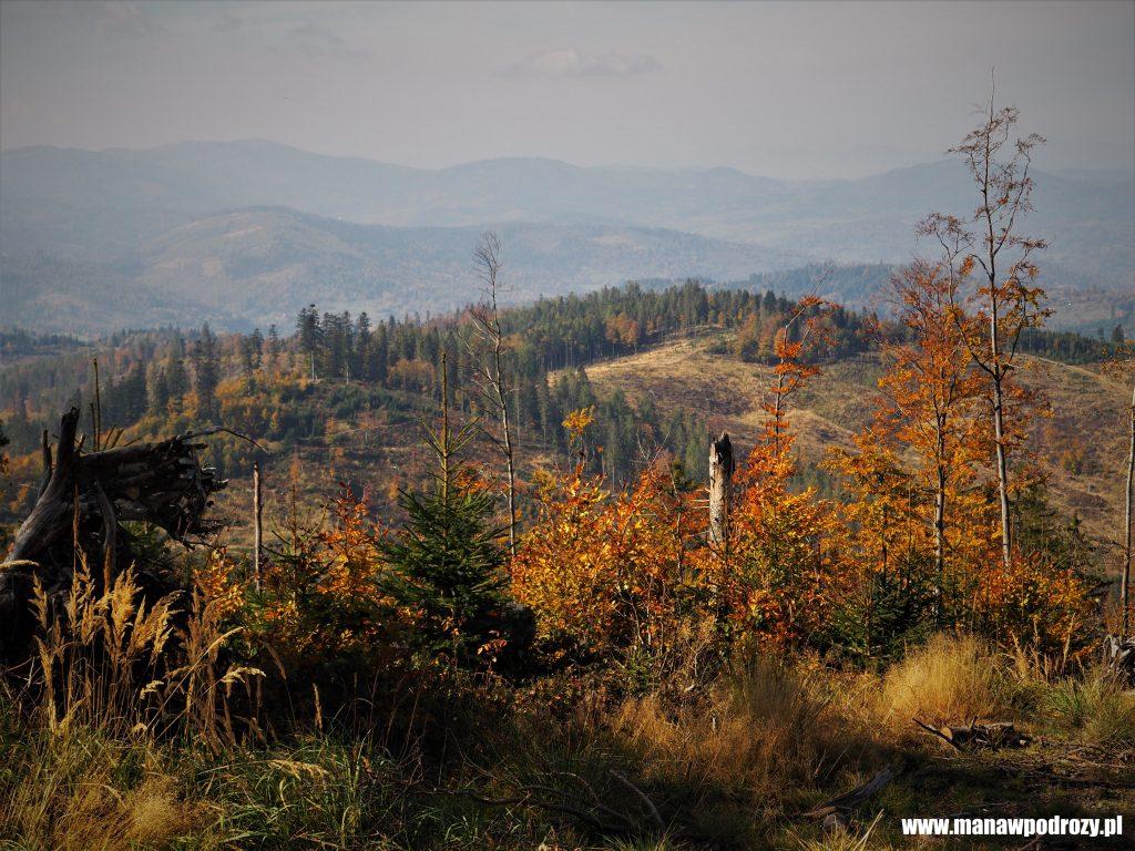 Jesienny Beskid Żywiecki