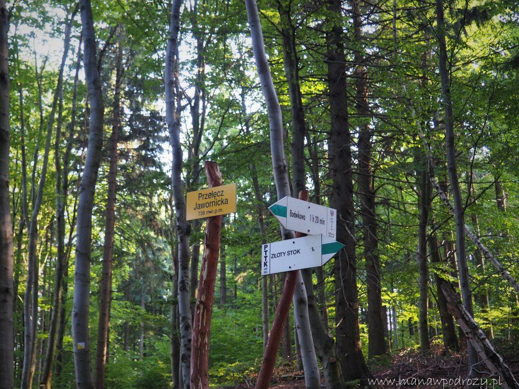 Na Przełęczy Jawornickiej