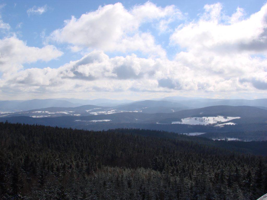 Widok z wieży widokowej na Borówkowej