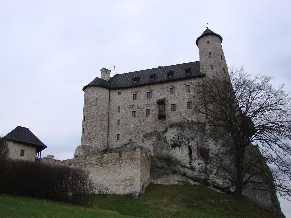 Zamek w Boblicach