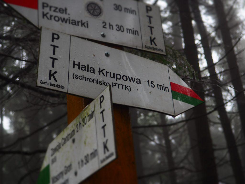 Kierunek- Hala Krupowa