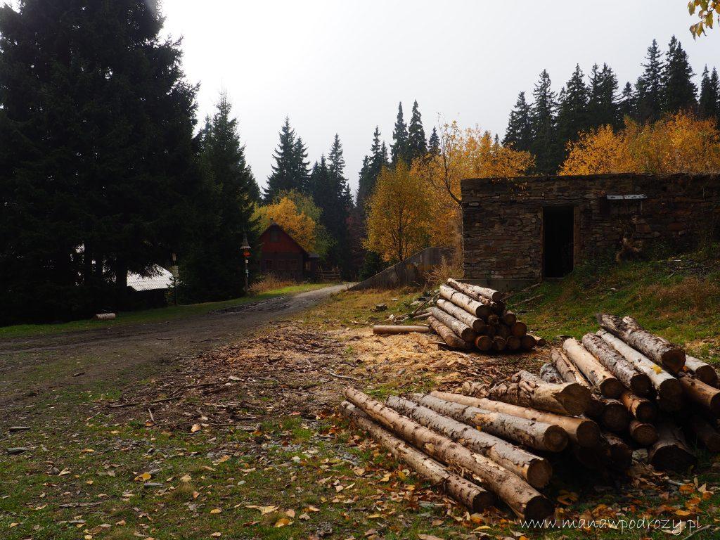 Ruiny schroniska Alfredka